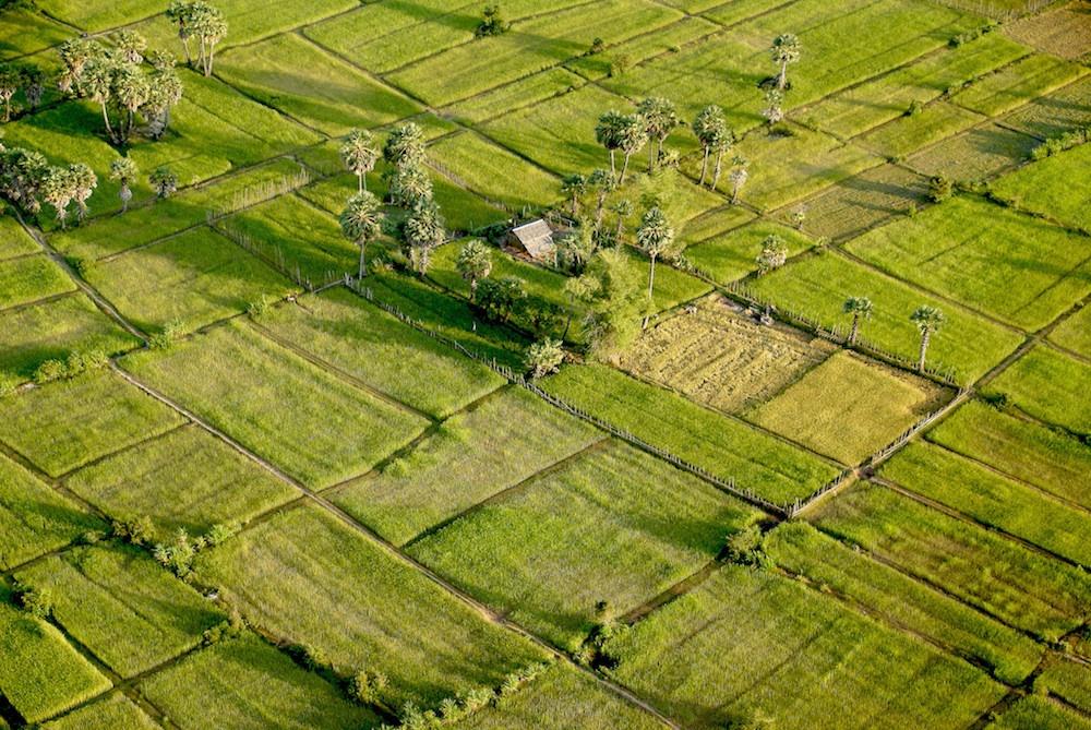 The beautiful green countryside in Cambodia