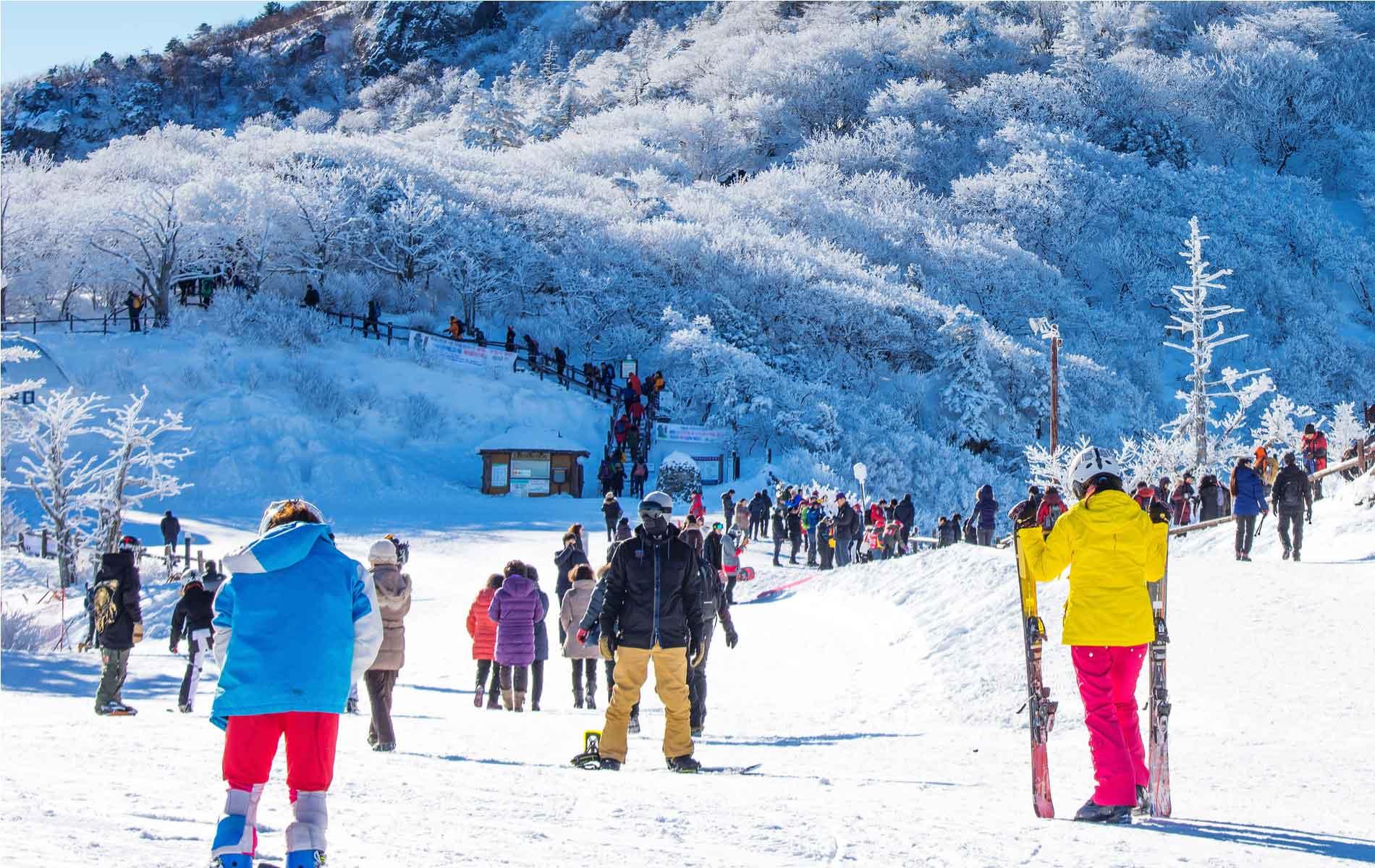 Pyeongchang_ski.jpg